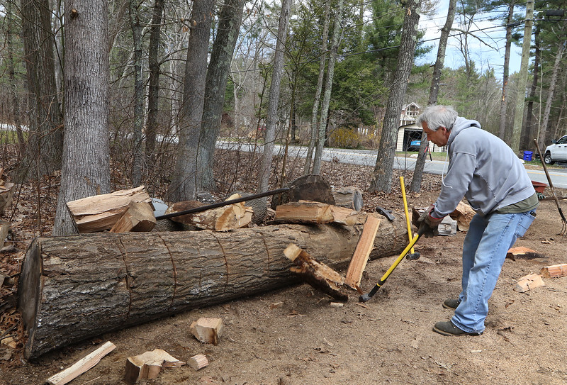 Donny Elwell of Bedford splits some more firewood from an oak log in his yard on Carlisle Road. He heated his house entirely with wood this winter.  (SUN/Julia Malakie)
