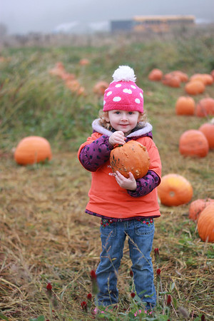 2013 Pumpkin Patch Field Trip