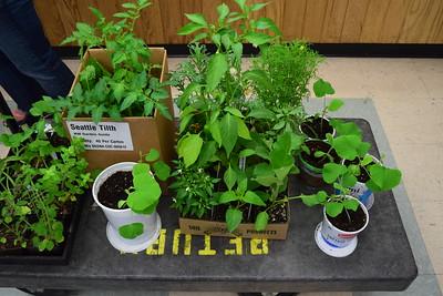 Women's Health Outreach Rooftop Garden Project