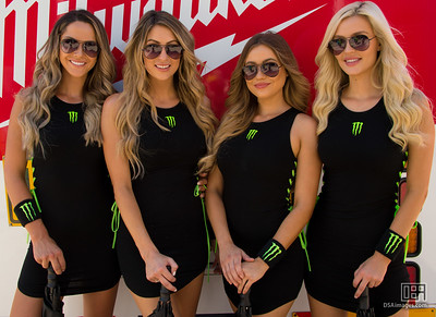 Monster Energy Girls
