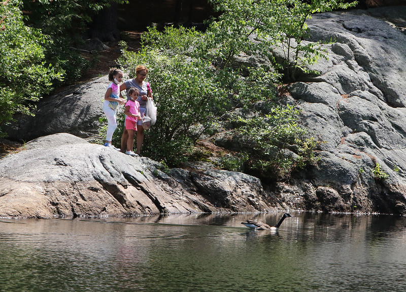 Features around Mirror Lake in Coggshall Park in Fitchburg.  Millie Ortiz of West Fitchburg, with granddaughters Daliyah Perez, 7, left, and Damyrah, 4, watch geese on Mirror Lake.(SUN/Julia Malakie)