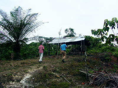 We accompany part of the new Board to the area where their working ranches have been burned in the past.