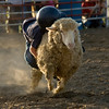 Hang On CowBoy!