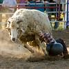 Sheep One, Cowboy Zero