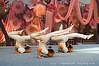 Cangzhou Acrobatic Troupe