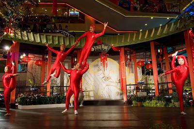 China GuangDong New Star Art Troupe