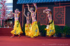Tibetan Dance Performances