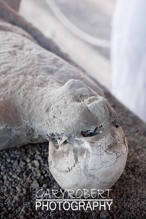 Pompeii__5526