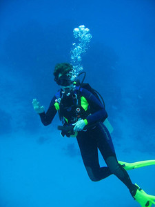 Carol Fankhauser scuba-dived in the waters off Mexico, Belize,St. Lucia and the Bahamas.