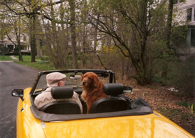 George Hoover and his dog, Capricorn, en route to a house call in his Alpha Romeo. Capricorn obediently waited in the car while George saw his patients.(Photo courtesy of the family.)
