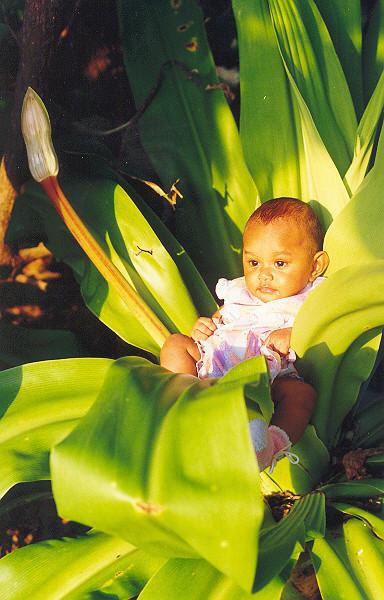 Esther, Vanuatu