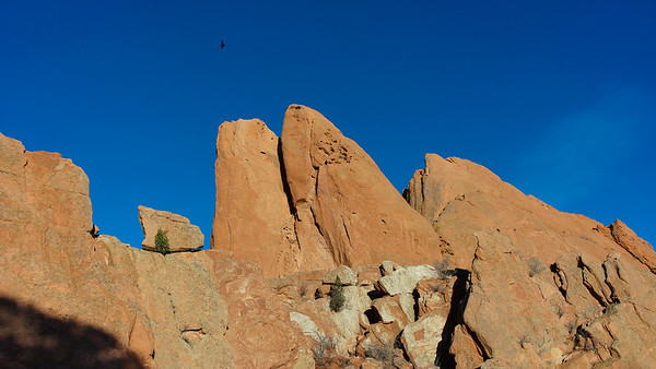 Garden of the Gods at dusk. Notice too, the bird soaring above.