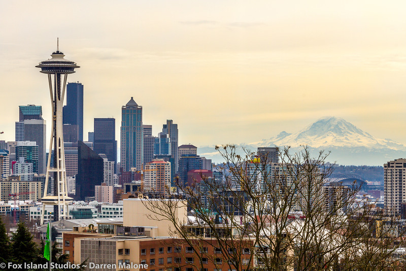 Don-Marshall-Family-Seattle-Skyline-78