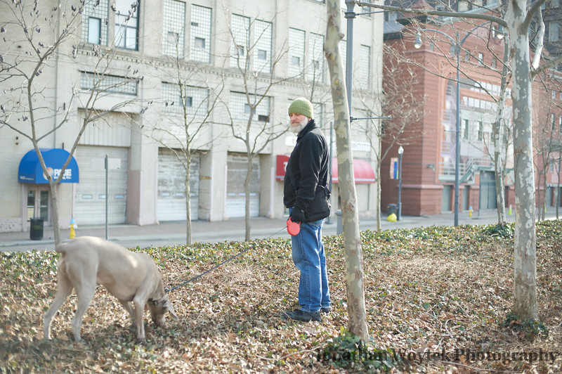 City Living with Dogs
