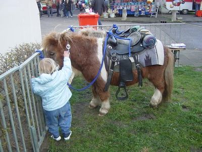 I want to ride the pony!!!!