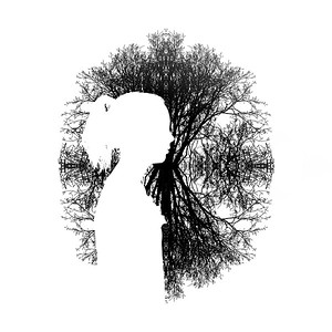 Girl and Silhouette