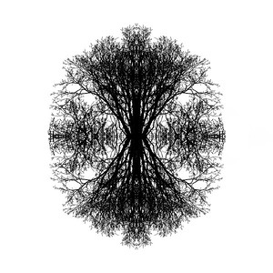 Digital Conceptual Image