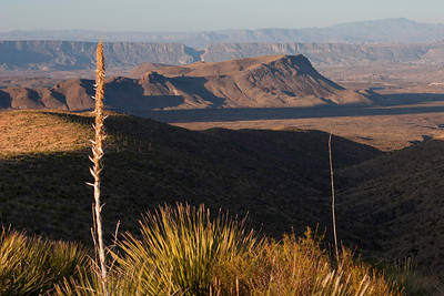 The view from Sotol Vista as the morning sun lights up Santa Elana canyon in the distance.