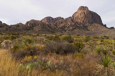 On day 3 we headed up into the Chisos Mountains with the goal of hiking The Lost Mine Trail.  As luck would have it the light was fantastic for photography on the drive in and I managed to get this great shot of the mountains.