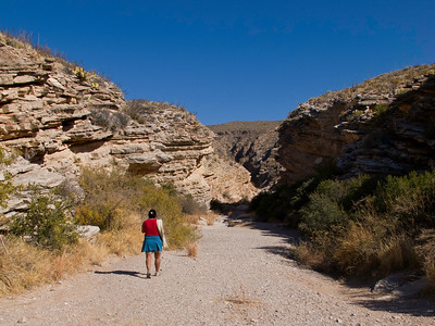 It's a short hike up a dry creek bed to Ernst Tinaja.