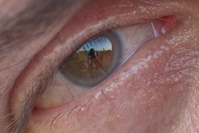 Eyes-6705