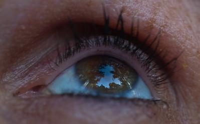 Eyes-6688