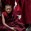 Young Tibetan monk in the middle of a debate at Sera Monastry