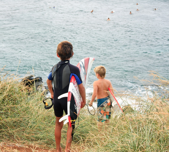 Little Surfers