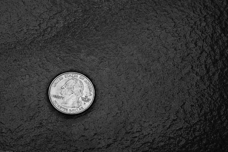 Coin on Backyard Table