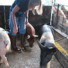 jenny_and_pigs_2