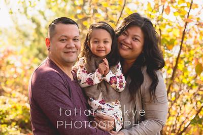 Cabrera Family 2017