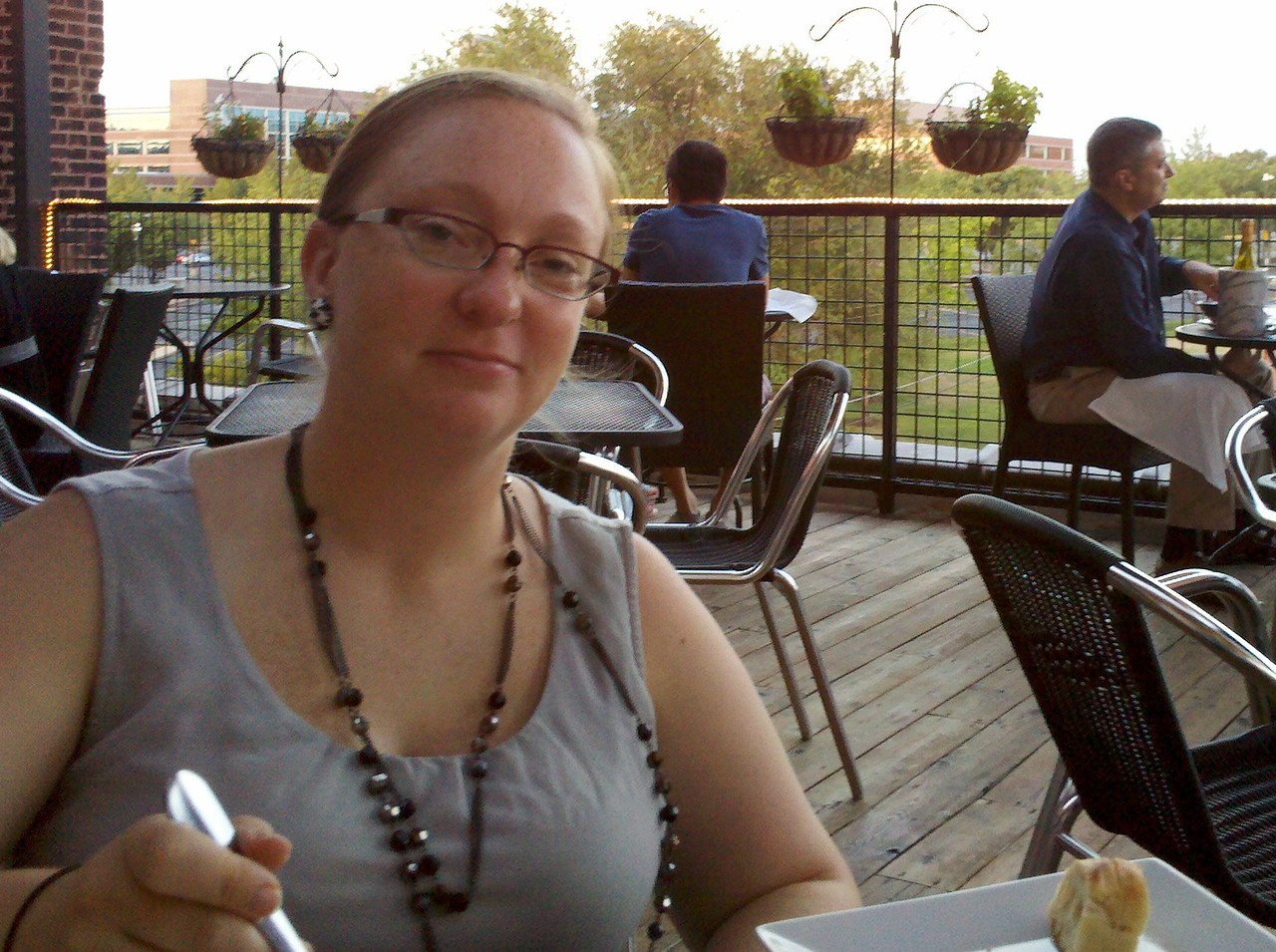 Adam, Heather, Cyndy, and I had  a lovely dinner in downtown St. Louis at a little French bistro rooftop cafe, the Vin de Set.