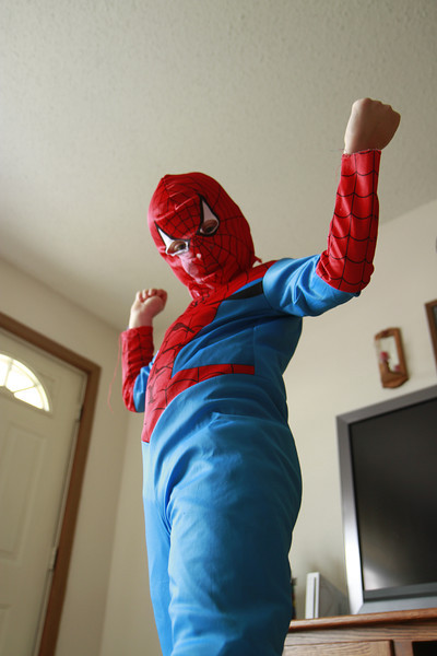 Larger than life... and the front door... Spider Man held the ceiling up for a while.  Has anybody seen Jakob???