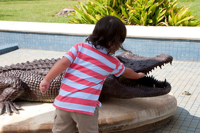Kemper proving that the aligator doesn't bite.