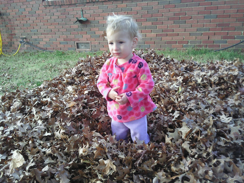 Lyla in Leaves November 2013
