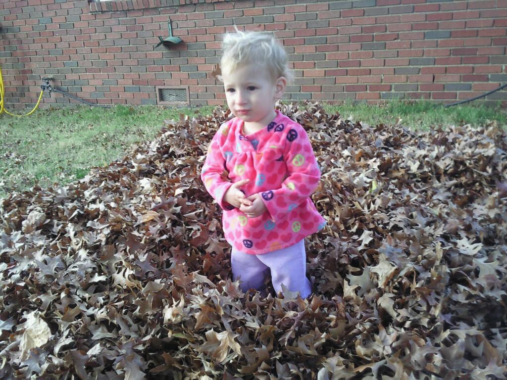 Lyla in Leaves November 2013