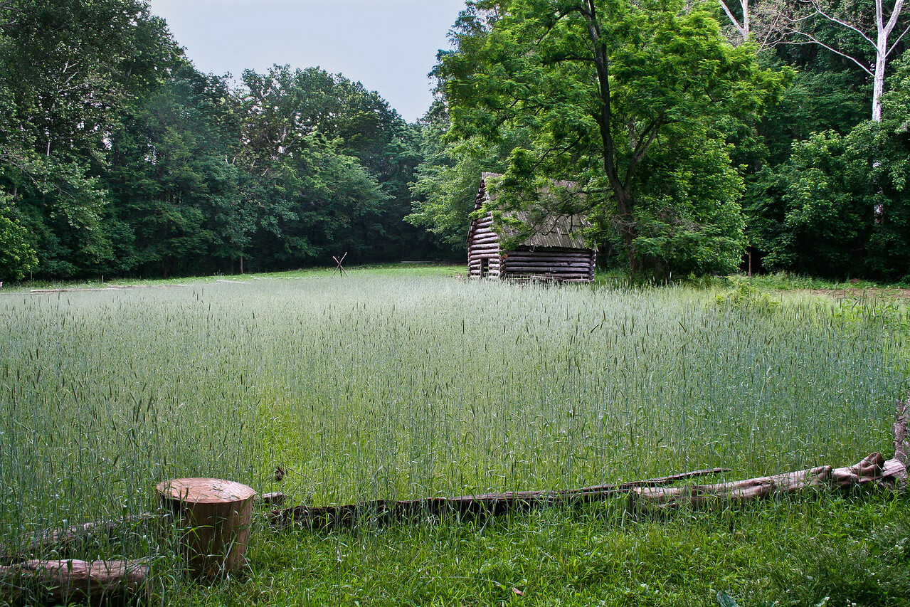 494_claude moore farm_May 29, 2010