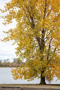 Ohio_Fall_015