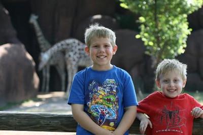 the STL zoo.