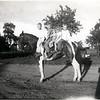 1948 Boles family on horse Chief. Walt Boles, Ray Boles Jr., Jimmy Boles, Sissy Boles and Willie Boles. (Photo ID: 38773)