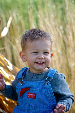 Hayden [18 Months]