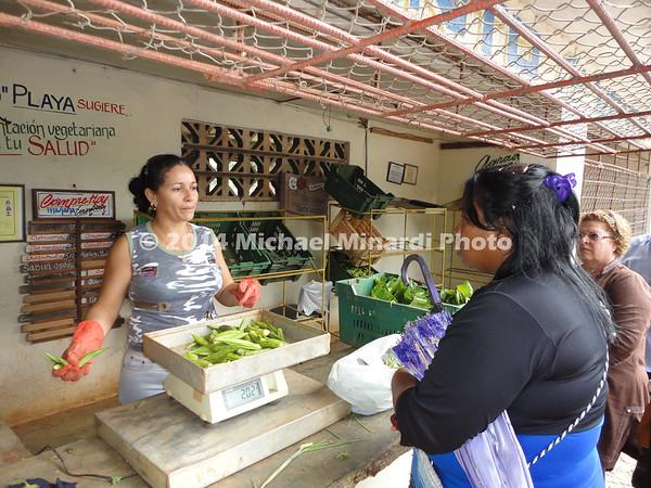 Local farmers market DSC01081