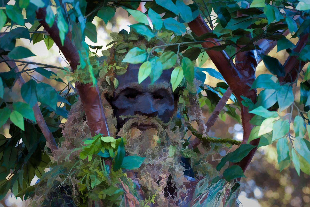 The Tree Man.