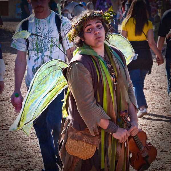 The fairy and his violin.