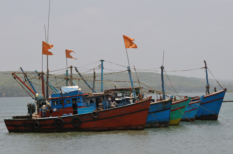 Part of Chapora Jetty trawler fleet