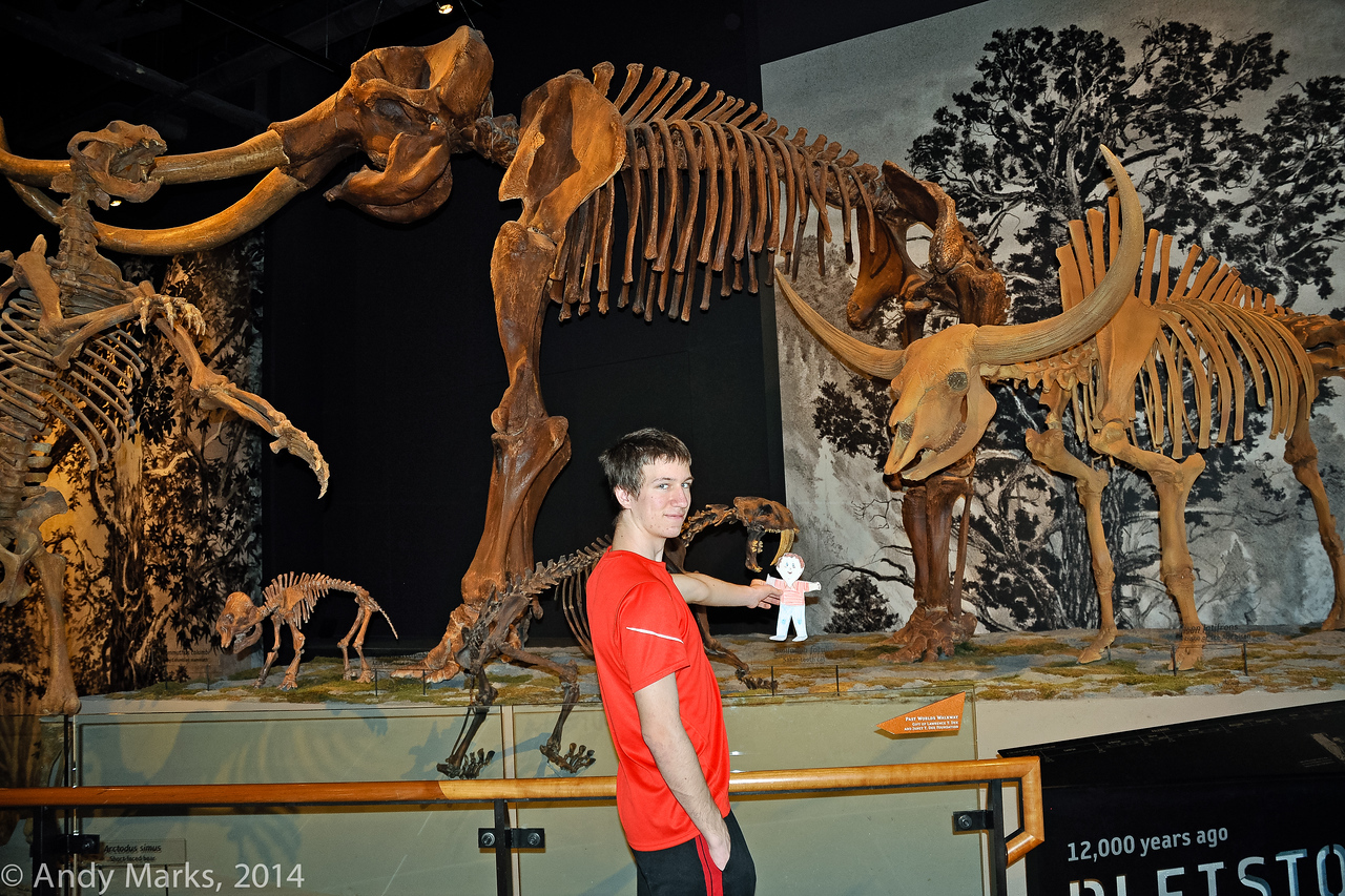 Chase with Stan and ice-age mammals