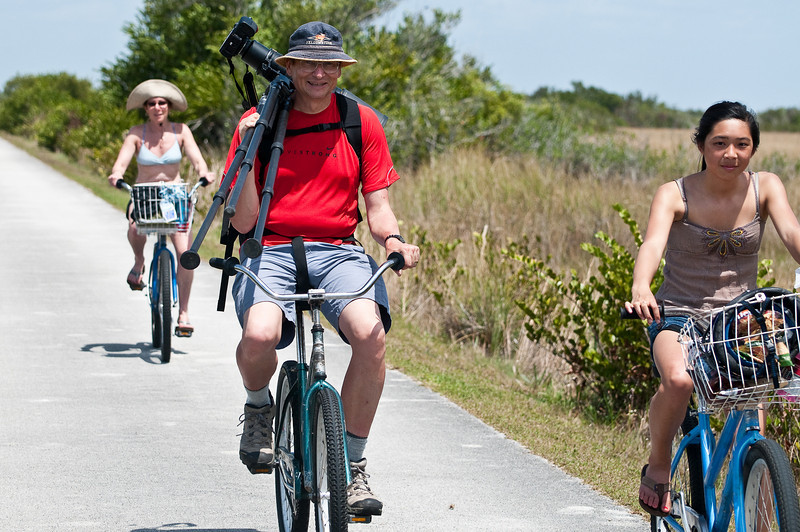 Shark Valley bike trail, Everglades National Park, a 15 mile loop trail. Lots of allilgators and birds to see.