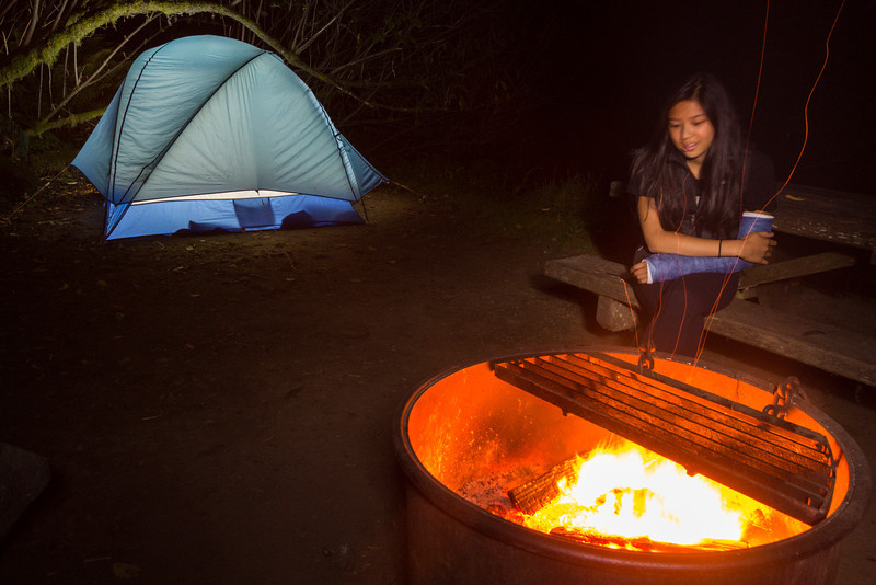 camping in the redwoods - Prarie Creek State Park