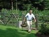 Dr Ben harvesting dinner from his deer- and rabbit-proof garden
