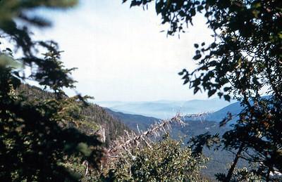 Tuckerman Ravine Trail?